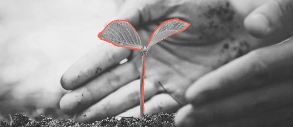 Una invitación para pensar la sostenibilidad