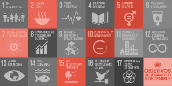 Sostenibilidad, pandemia y nuevos compromisos